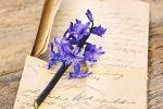 Písanie ako meditácia na bezpečných stranách vášho denníka
